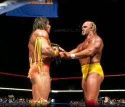 The Ultimate Warrior vs Hulk Hogan WrestleMania VI